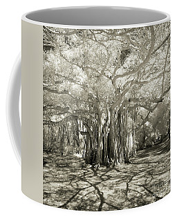 Banyan Strangler Fig Tree Coffee Mug