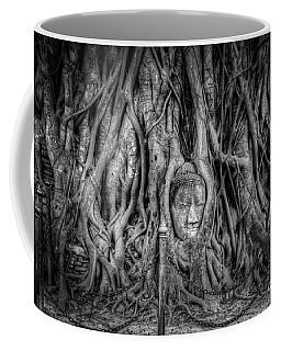 Banyan Tree Coffee Mug