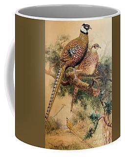 Bar-tailed Pheasant Coffee Mug