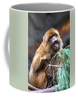 Barbary Macaque Monkey Coffee Mug
