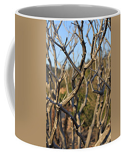 Bare The Beauty Coffee Mug
