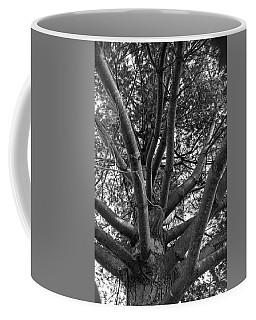 Bare Tree Coffee Mug
