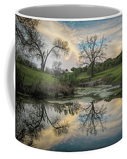 Bare Tree Reflections Coffee Mug
