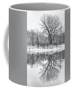 Coffee Mug featuring the photograph Bare Trees by Darren White