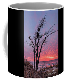 Coffee Mug featuring the photograph Bare Trees Overlooking A Beautiful Sunset by Sue Smith