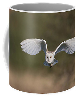 Barn Owl Approaching Coffee Mug