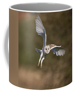 Barn Owl Cornering Coffee Mug