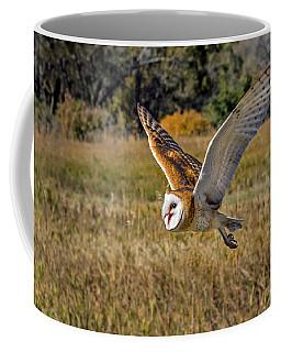 Barn Owl Flight 6 Coffee Mug