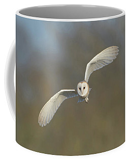 Barn Owl Hunting In Worcestershire Coffee Mug