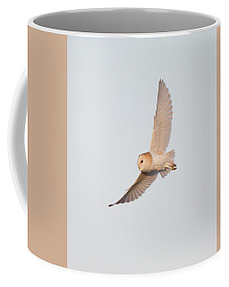 Barn Owl Hunting Coffee Mug