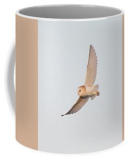 Barn Owl Hunting Coffee Mug