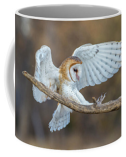 Barn Owl In Flight Coffee Mug