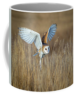 Barn Owl In Grass Coffee Mug