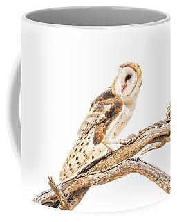 Barn Owl In The Desert Coffee Mug