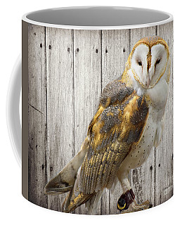Barn Owl Coffee Mug by Kathy M Krause