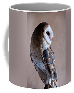Coffee Mug featuring the photograph Barn Owl by Monte Stevens