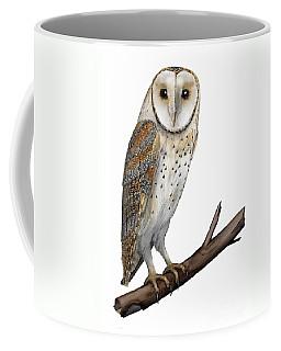 Barn Owl Screech Owl Tyto Alba - Effraie Des Clochers- Lechuza Comun- Tornuggla - Nationalpark Eifel Coffee Mug