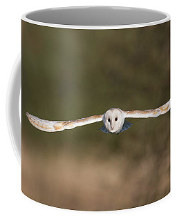 Barn Owl Wingspan Coffee Mug