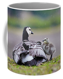 Barnacle Goose With Chick In The Rain Coffee Mug