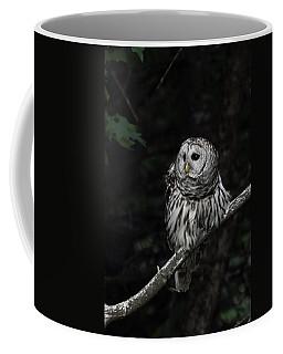 Barred Owl 2 Coffee Mug by Glenn Gordon