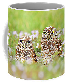 Barred Owl Buddies Coffee Mug