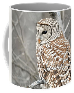 Barred Owl Close-up Coffee Mug