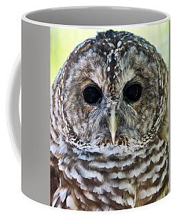 Barred Owl Closeup Coffee Mug