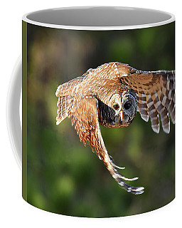 Barred Owl Flying Toward You Coffee Mug