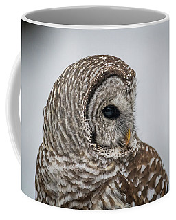 Coffee Mug featuring the photograph Barred Owl Portrait by Paul Freidlund