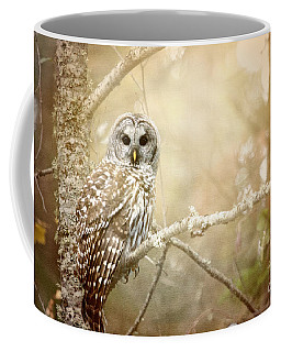 Barred Owl - Woodland Fellow Coffee Mug