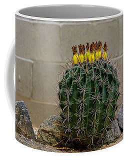 Coffee Mug featuring the photograph Barrel Against Wall No50 by Mark Myhaver