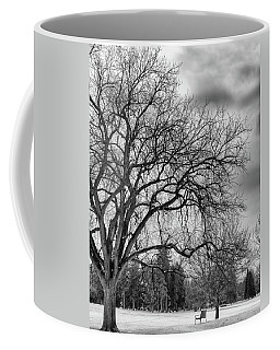 Winter In Cheesman Park, Denver, Co Empty Trees And Empty Benches Coffee Mug