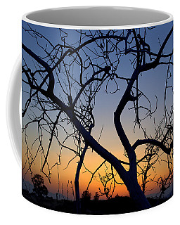 Coffee Mug featuring the photograph Barren Tree At Sunset by Lori Seaman
