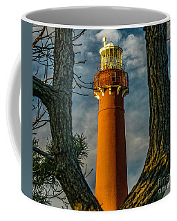 Coffee Mug featuring the photograph Barrny Thru The Trees by Nick Zelinsky