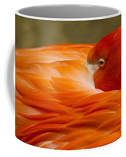 Bashful Flamingo Coffee Mug