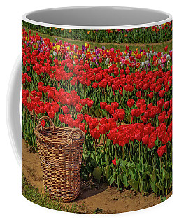 Coffee Mug featuring the photograph Basket For Tulips by Susan Candelario