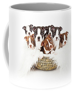 Basket Of Boston Terrier Puppies Coffee Mug