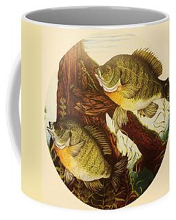 Basking Bluegills Coffee Mug by Bruce Bley