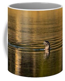 Basking In The Sunset Light Coffee Mug