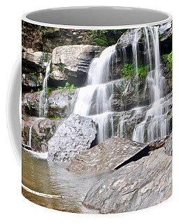 Bastion Falls Coffee Mug
