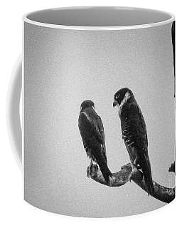 Bat Falcon In Black And White Coffee Mug