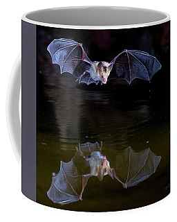 Bat Flying Over Pond Coffee Mug
