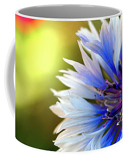 Batchelors Blue And White Button Coffee Mug