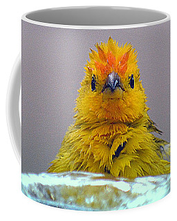 Bath Time Finch Coffee Mug