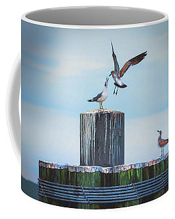 Coffee Mug featuring the photograph Battle Of The Gulls by Cindy Lark Hartman