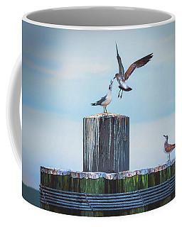Battle Of The Gulls Coffee Mug