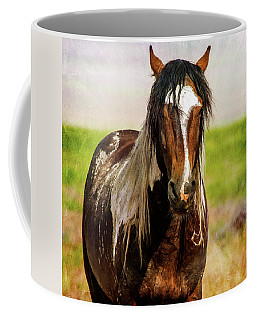 Coffee Mug featuring the photograph Battle Worn Stallion by Mary Hone