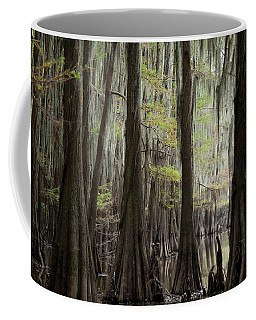 Bayou Trees Coffee Mug