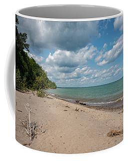 Beach At Doctors Park Iv Coffee Mug