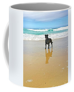 Coffee Mug featuring the photograph Beach Dog And Reflection By Kaye Menner by Kaye Menner